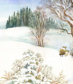 Winter landscape with sheeps — Stockfoto