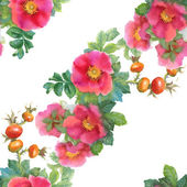Watercolor  flowers and briars — Stock Photo