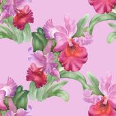 Colorful iris flowers background — Stockfoto