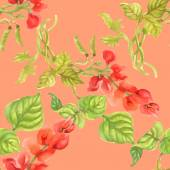 Plano de fundo colorido de physalis — Fotografia Stock