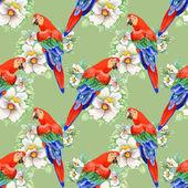 Parrots on floral pattern — Stok fotoğraf