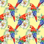 Parrots on floral pattern — Stock Photo