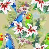 Papegaaien en mooie bloemen — Stockfoto