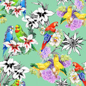 Parrots and beautiful flowers — Stock Photo