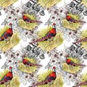 Pheasant animals background — Stock Photo