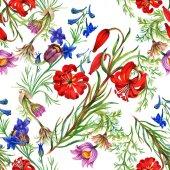 Meadow flowers pattern — Stock Photo