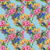 Tropical birds with flowers — Stockfoto