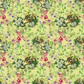 開花ツリー上の熱帯鳥 — ストック写真