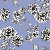 Rose flowers pattern — Stock Photo