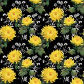 Yellow chrysanthemum flowers pattern — Стоковое фото