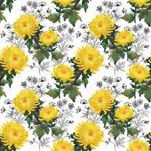 Yellow chrysanthemum flowers pattern — Stock Photo