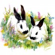 Watercolor rabbits in grass — Stock Photo #67840455
