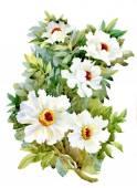 Watercolor garden flowers — Stock Photo