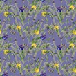 Watercolor iris flowers pattern — Stock Photo #70346179