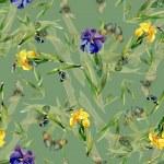 Watercolor iris flowers pattern — Stock Photo #70346261