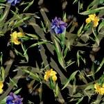 Watercolor iris flowers pattern — Stock Photo #70346263