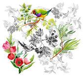 Птицы с садовых цветов — Стоковое фото