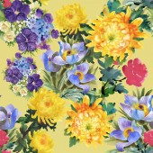 Summer garden flowers — Stock Photo