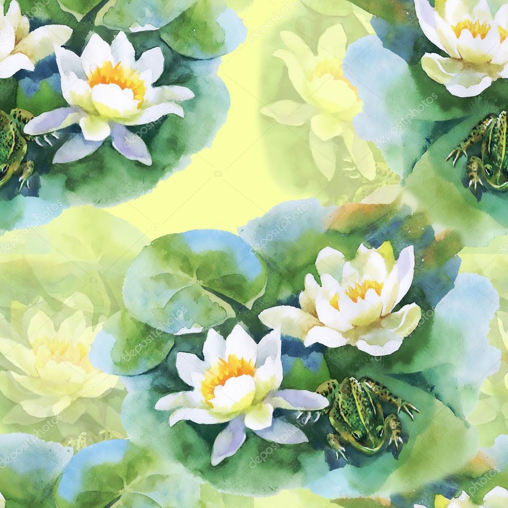 Dessin de fleurs de n nuphar blanc photo 73621563 - Nenuphar dessin ...