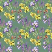 Flores do Prado de verão — Fotografia Stock