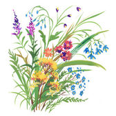 Garden floral bouquet — Stock Photo