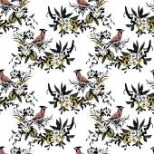 Forest birds pattern — Stock Photo
