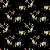 Лесные птицы шаблон — Стоковое фото