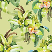 Floral background with orchid flowers — Stock Photo