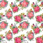 Summer roses flowers — Stock Vector #80079056