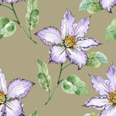 Летний луг цветущие цветы — Стоковое фото