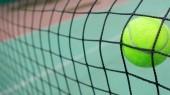 Tennisball im netz — Stockfoto