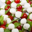 Appetizer. baby mozzarella with cherry tomatoes and basil leaves. — Stock Photo #54922943