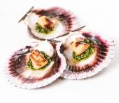 Studio closeup of seared scallops — Foto Stock
