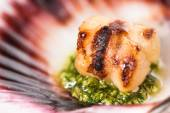 Studio closeup of seared scallops — Stock Photo