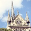 Architectural details of Cathedral Notre Dame de Paris. — Stock Photo #67988205