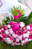 Bouquet of pink peony. Floral pattern. — Stock Photo