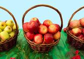 Manzanas en cestas — Foto de Stock