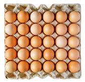 Eggs in a box — Stock Photo