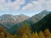 Mountains autumn panorama — Stock Photo