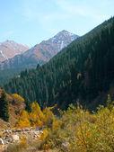 Mountains autumn — Stock Photo