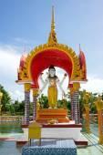 Буддийский Пагода — Стоковое фото