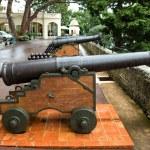 Monaco - Cannon — Stock Photo #71653093