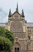 Paris - Cathedral of Notre Dame — Stock Photo