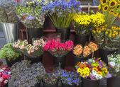 Outdoor flower market on Las Ramblas — Photo