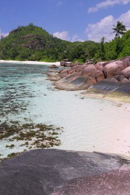 Tropics, gulf Baie Lazare. Mahe, Seychelles