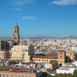 Panorama of city Malaga, Spain — Stock Photo #66410025