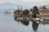 Coast of Lake Geneva in January. Veito-Chillon, Switzerland — Stok fotoğraf