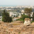 Ruins of Punic Carthago, Bierce hill. La Gulett, Tunisia — Stock Photo #69546059