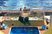 Pool and jacuzzi on cruise liner — Stockfoto