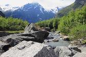 Mountain river, Norway — Stock Photo